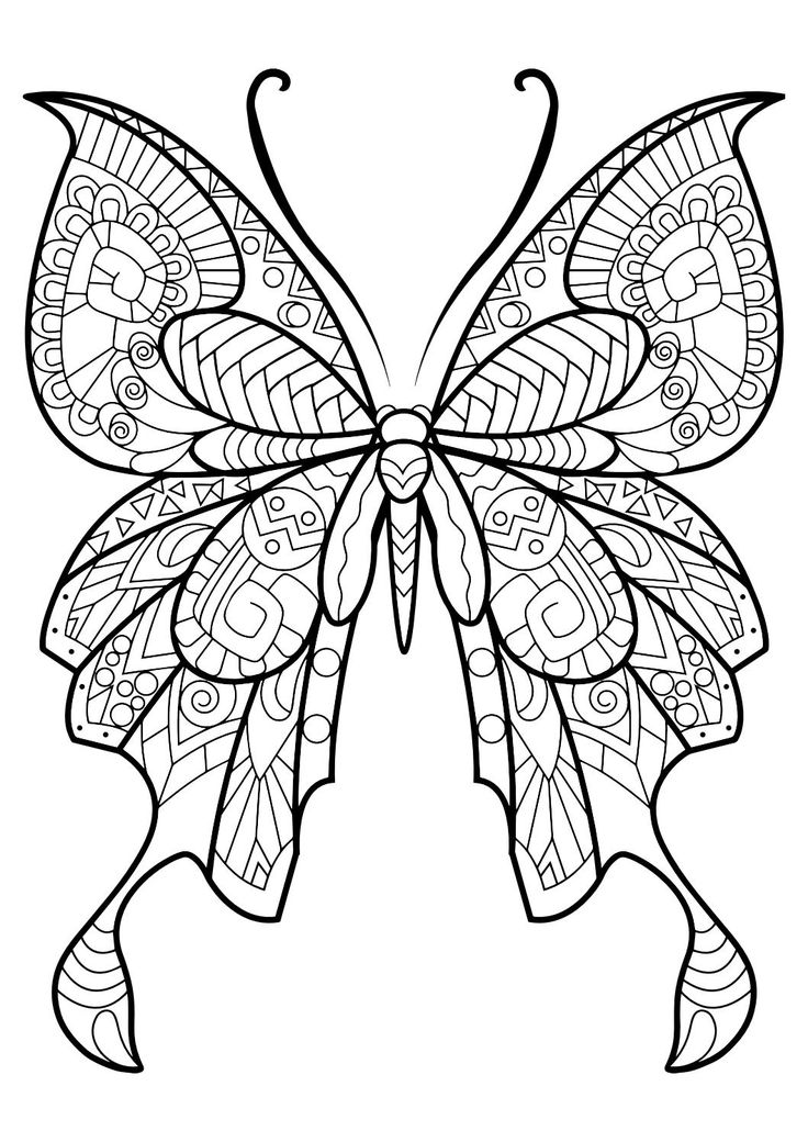 draw pattern - this adult coloring book with beautiful