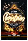 Christmas and New Year Flyer Bundle - 6