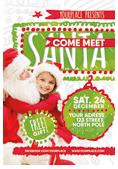 Christmas and New Year Flyer Bundle - 28