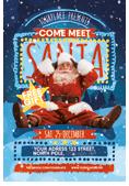 Christmas and New Year Flyer Bundle - 30