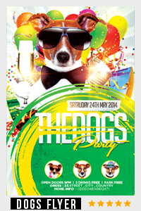 Birthday Party Flyer Template - 9